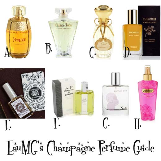 Champagne perfume guide