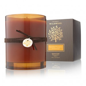 Thymes Brandied Pumpkin & Chestnut