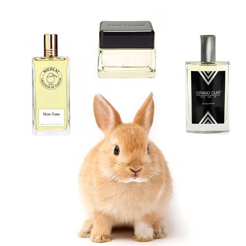 Spring 2014 perfume