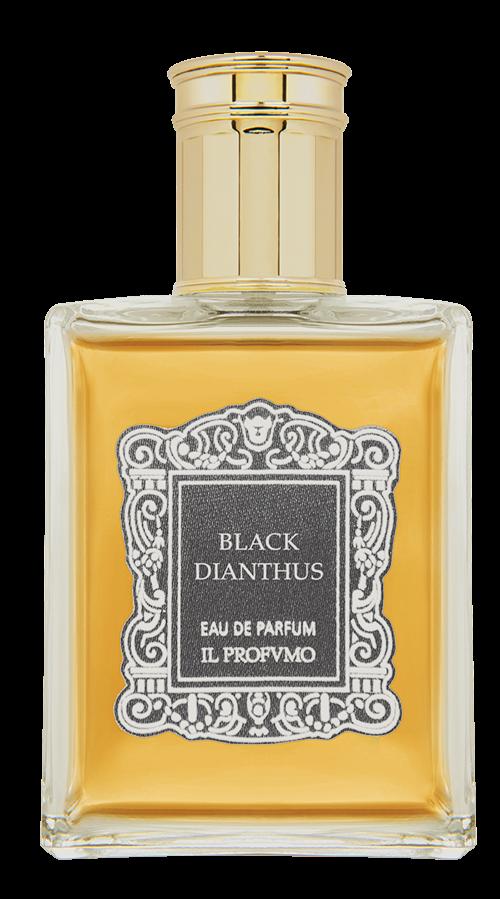 Il Profvmo Black Dianthus