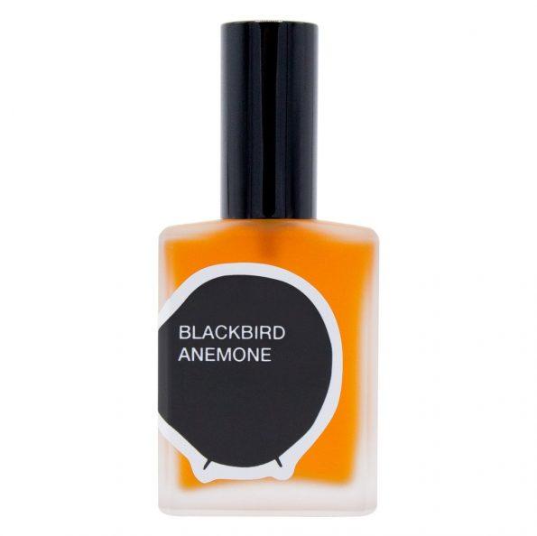 Blackbird Anemone review